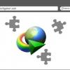 Comment désactiver l'intégration du navigateur IDM sélectivement ou complètement