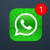 WhatsApp téléchargement gratuit et installer des services voix appelant gratuits