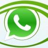 5 conseils pour devenir un gourou de WhatsApp