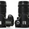 Canon EOS 70D vs Nikon D7100 examen - qui marque la caméra devriez-vous acheter et pourquoi?