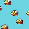 Oiseau Flappy télécharger gratuitement - le conduire par la route de crossy