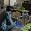 Minecraft Windows Edition 10 est de 10 $, les matchs multi-plateforme multijoueurs pris en charge