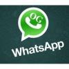 Top 5 des ingrédients secrets de devenir un maître de WhatsApp