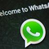 WhatsApp téléchargement 02/12/58 apk - Appels vocaux gratuits et sauvegarder les conversations sur Google Drive